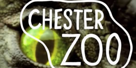 'wild Science' Rapper Jon Chase To Perform At Chester Zoo's Wild Worlds Garden Festival