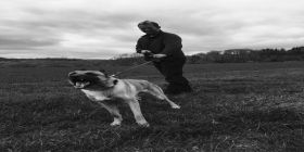 Off-duty Officer And Police Dog Broke Up Campers Breaching Covid-19 Regulations